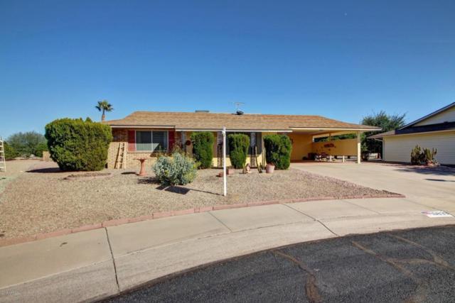 19833 N 101ST Avenue, Sun City, AZ 85373 (MLS #5711935) :: The Everest Team at My Home Group