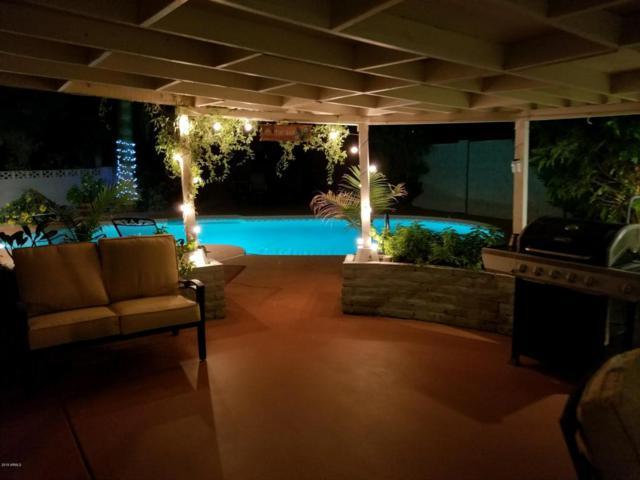 3225 N 86TH Street, Scottsdale, AZ 85251 (MLS #5712127) :: RE/MAX Excalibur