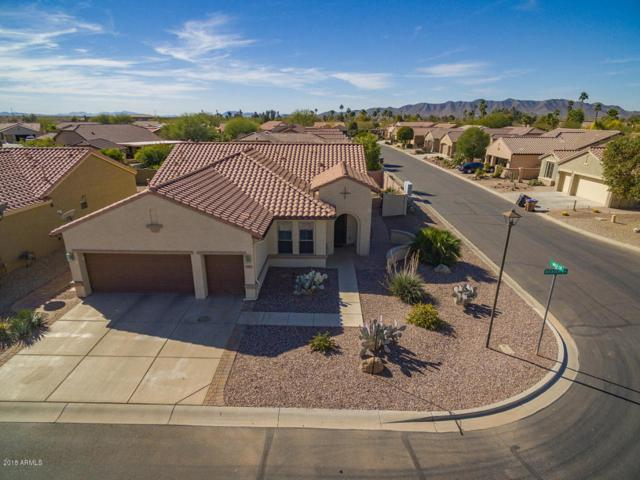 5405 W Buckskin Drive, Eloy, AZ 85131 (MLS #5712286) :: Yost Realty Group at RE/MAX Casa Grande