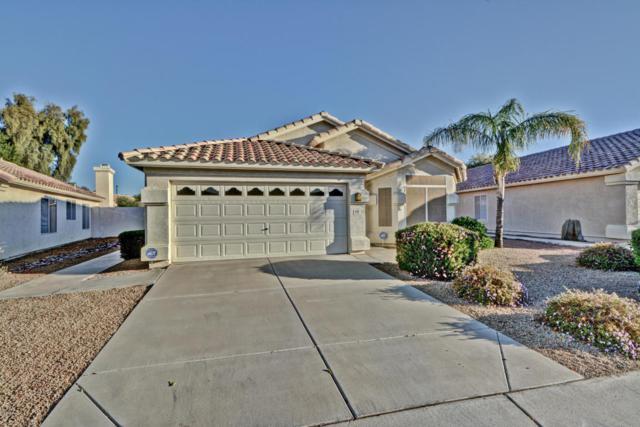 6228 W Pontiac Drive, Glendale, AZ 85308 (MLS #5712550) :: Sibbach Team - Realty One Group