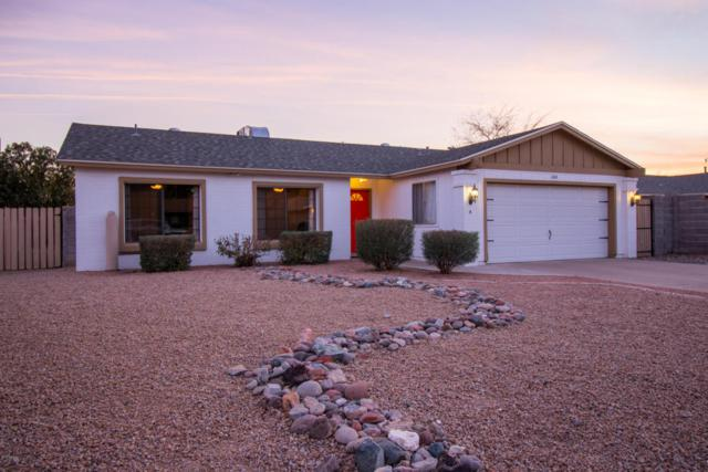 2445 E Aster Drive, Phoenix, AZ 85032 (MLS #5714385) :: The Everest Team at My Home Group