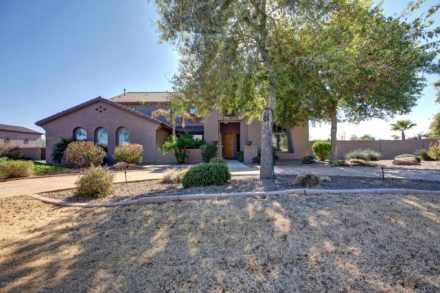 14139 W Christy Drive, Surprise, AZ 85379 (MLS #5714700) :: Occasio Realty