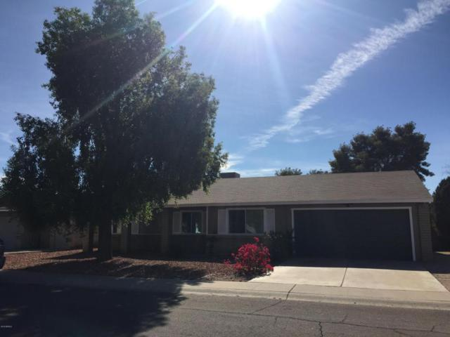 1169 W Nopal Place, Chandler, AZ 85224 (MLS #5715588) :: The Everest Team at My Home Group