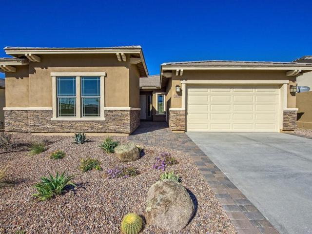 12010 S 182nd Avenue, Goodyear, AZ 85338 (MLS #5716064) :: Occasio Realty