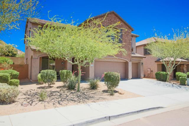 28039 N 90TH Lane, Peoria, AZ 85383 (MLS #5716097) :: Occasio Realty