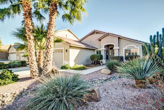 12363 W Mohave Street, Avondale, AZ 85323 (MLS #5716201) :: Occasio Realty