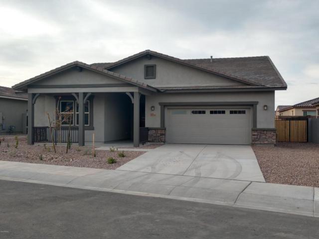 13724 W Harvest Avenue, Litchfield Park, AZ 85340 (MLS #5717124) :: Occasio Realty