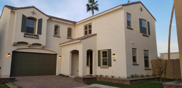 3323 N 25TH Place, Phoenix, AZ 85016 (MLS #5717459) :: Occasio Realty