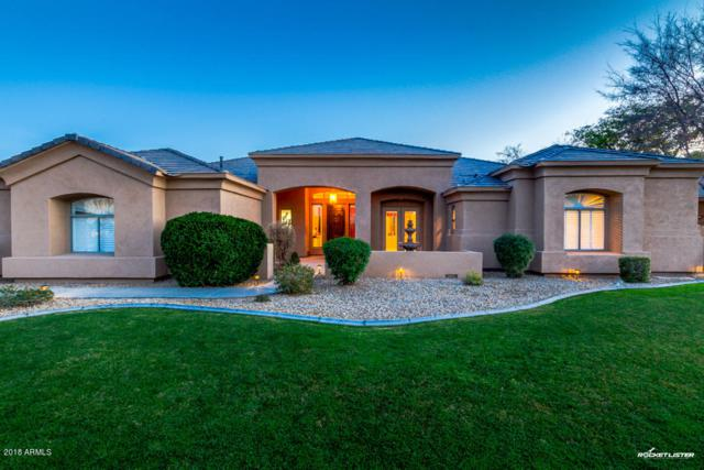 6437 W Voltaire Drive, Glendale, AZ 85304 (MLS #5717862) :: Occasio Realty