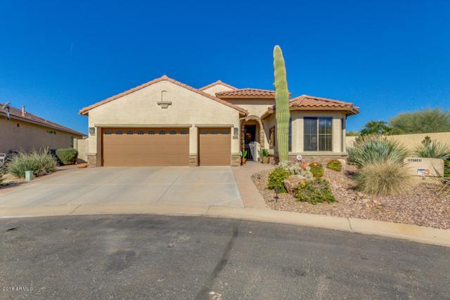 5108 W Mohawk Drive, Eloy, AZ 85131 (MLS #5719009) :: Yost Realty Group at RE/MAX Casa Grande