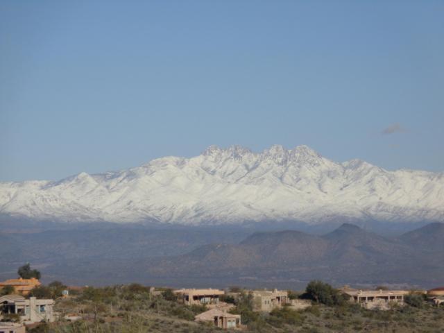 15910 N Ringtail Trail, Fountain Hills, AZ 85268 (MLS #5719266) :: Yost Realty Group at RE/MAX Casa Grande
