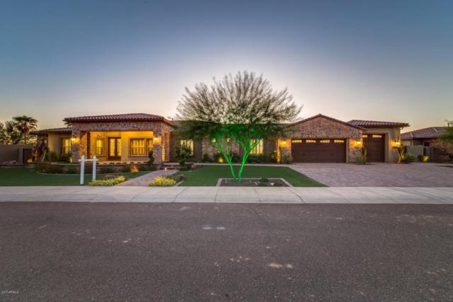 13960 N 74th Lane, Peoria, AZ 85381 (MLS #5719638) :: Occasio Realty