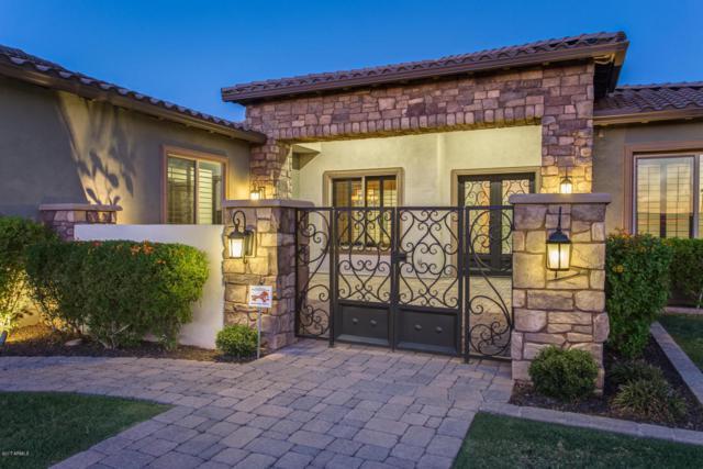 13825 N 74th Avenue, Peoria, AZ 85381 (MLS #5719640) :: Occasio Realty