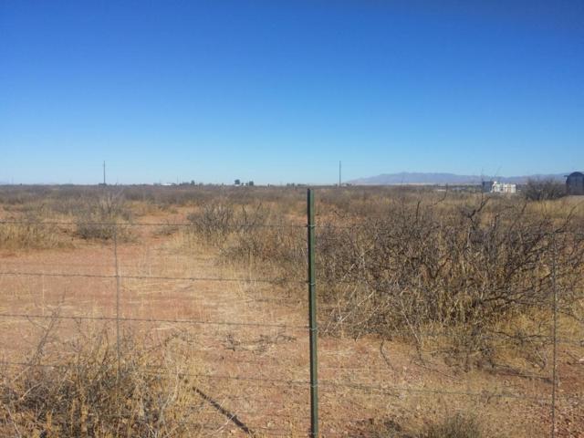 XXXX 80 Highway, Douglas, AZ 85607 (MLS #5720284) :: Occasio Realty