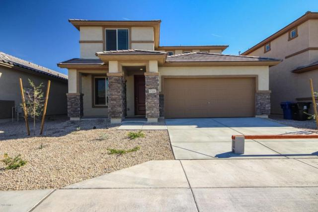 17331 N 114TH Drive, Surprise, AZ 85378 (MLS #5720362) :: Occasio Realty