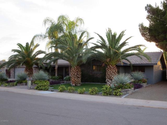 10 S Stellar Parkway, Chandler, AZ 85226 (MLS #5720577) :: Yost Realty Group at RE/MAX Casa Grande
