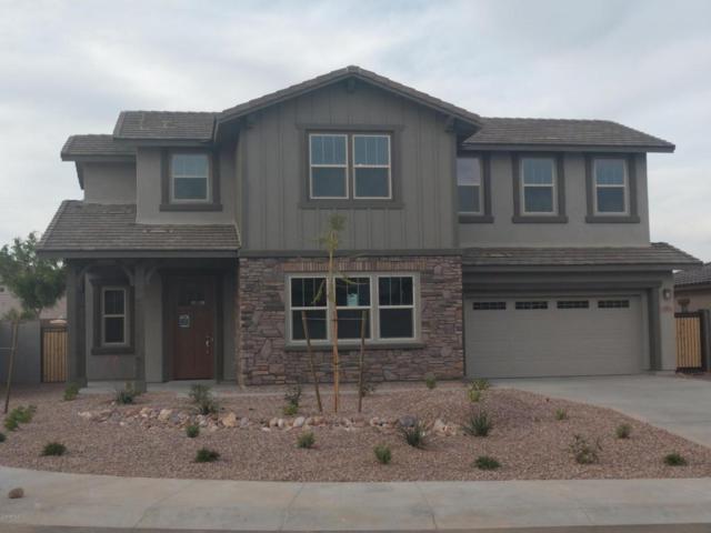 13864 W Sarano Terrace, Litchfield Park, AZ 85340 (MLS #5720822) :: Occasio Realty
