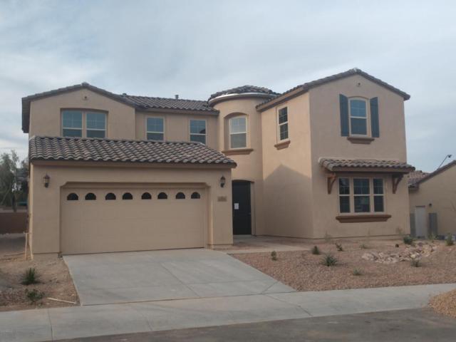 13854 W Sarano Terrace, Litchfield Park, AZ 85340 (MLS #5720833) :: Occasio Realty