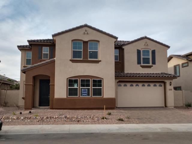 13744 W Sarano Terrace, Litchfield Park, AZ 85340 (MLS #5720936) :: Occasio Realty