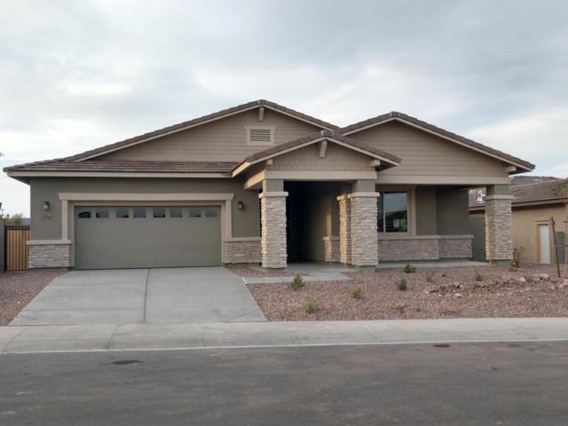 13806 W Harvest Avenue, Litchfield Park, AZ 85340 (MLS #5720940) :: Occasio Realty