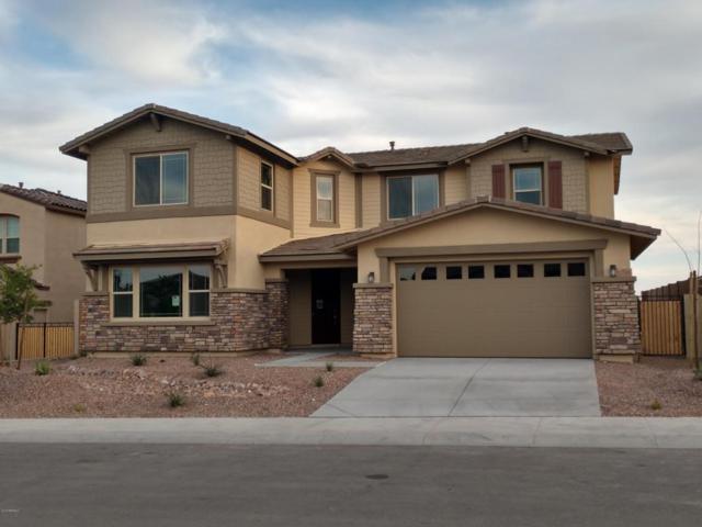 13785 W Harvest Terrace, Litchfield Park, AZ 85340 (MLS #5720942) :: The Garcia Group