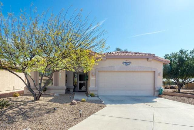 6461 S Palo Blanco Drive, Gold Canyon, AZ 85118 (MLS #5721386) :: Yost Realty Group at RE/MAX Casa Grande