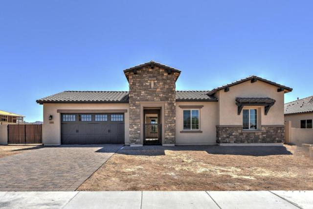 1331 N Chatsworth Street, Mesa, AZ 85207 (MLS #5721721) :: My Home Group