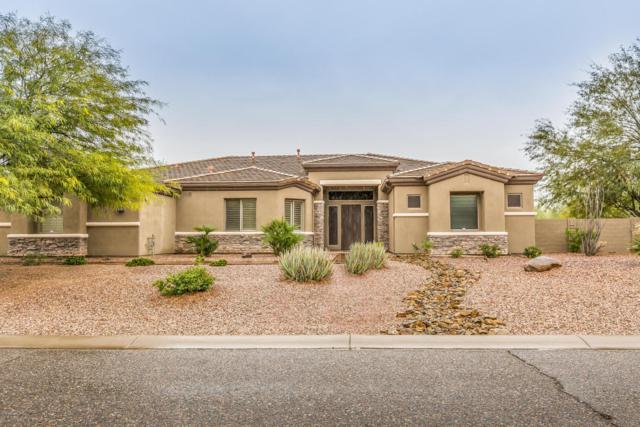 4607 W Range Mule Drive, Phoenix, AZ 85083 (MLS #5722410) :: Occasio Realty