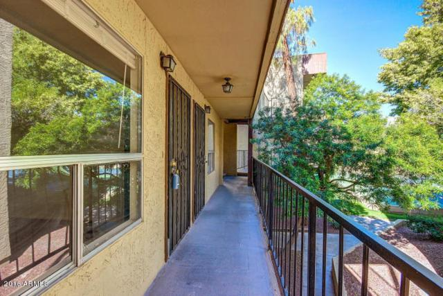 461 W Holmes Avenue #212, Mesa, AZ 85210 (MLS #5722833) :: Lux Home Group at  Keller Williams Realty Phoenix
