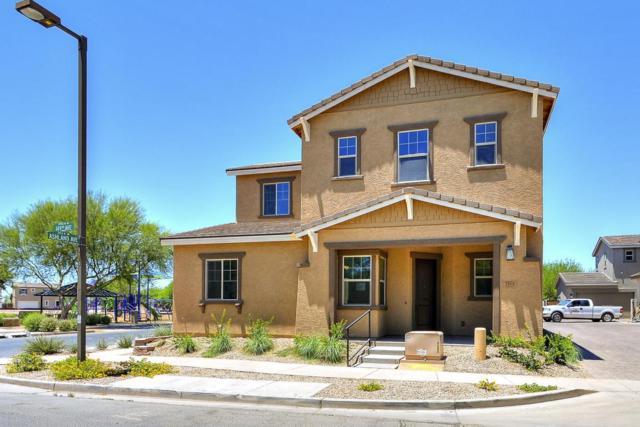 2508 N 149TH Avenue, Goodyear, AZ 85395 (MLS #5722895) :: Occasio Realty