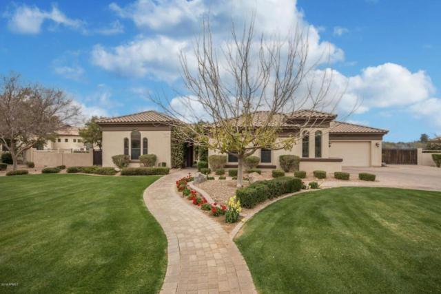 19126 E Vallejo Street, Queen Creek, AZ 85142 (MLS #5723662) :: Yost Realty Group at RE/MAX Casa Grande