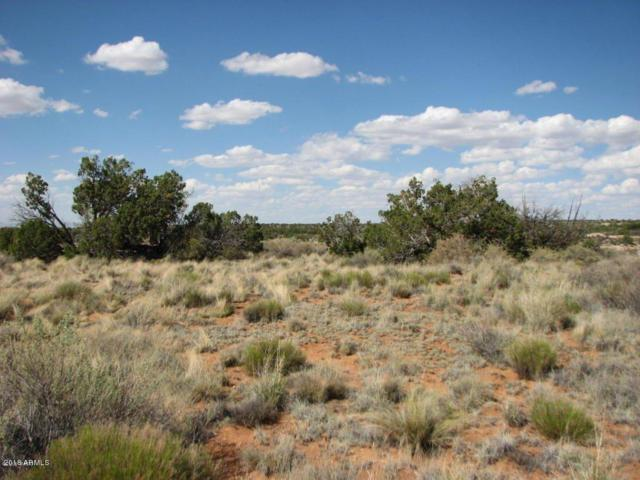Lot 279 Chevelon Canyon Ranch, Overgaard, AZ 85933 (MLS #5724000) :: The Daniel Montez Real Estate Group