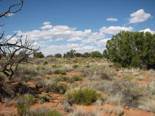 Lot 280 Chevelon Canyon Ranch, Overgaard, AZ 85933 (MLS #5724011) :: The Daniel Montez Real Estate Group