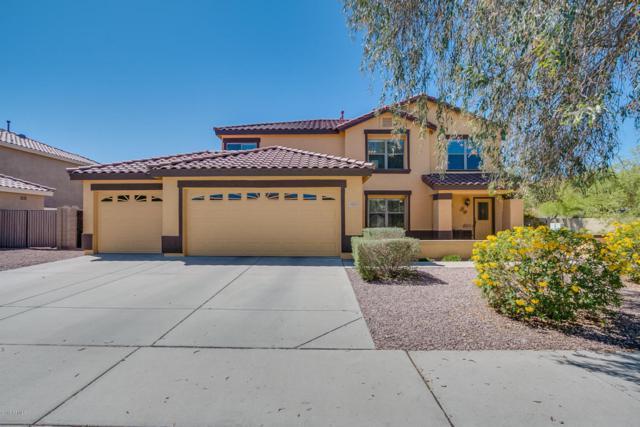 3341 W Desert Vista Trail, Phoenix, AZ 85083 (MLS #5724035) :: Occasio Realty
