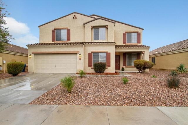 23628 W Pecan Road, Buckeye, AZ 85326 (MLS #5724261) :: Kortright Group - West USA Realty