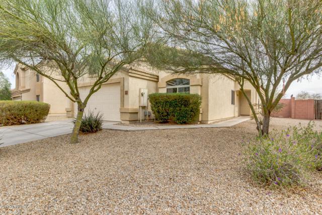 23969 N Oasis Boulevard, Florence, AZ 85132 (MLS #5724366) :: Yost Realty Group at RE/MAX Casa Grande