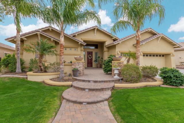 5025 W Range Mule Drive, Phoenix, AZ 85083 (MLS #5724850) :: The Laughton Team