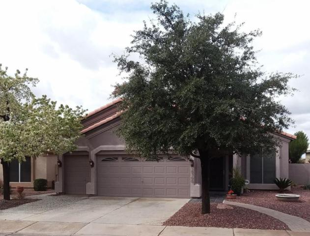 18366 N Coyote Lakes Parkway, Surprise, AZ 85374 (MLS #5724989) :: The Everest Team at My Home Group