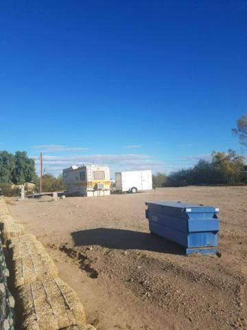 10381 S Rhyolite Avenue, Wellton, AZ 85356 (MLS #5725848) :: Brett Tanner Home Selling Team