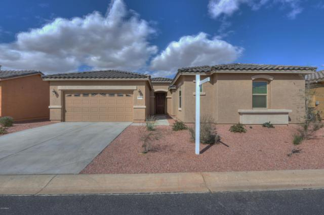 41978 W Solitare Drive, Maricopa, AZ 85138 (MLS #5725958) :: Sibbach Team - Realty One Group