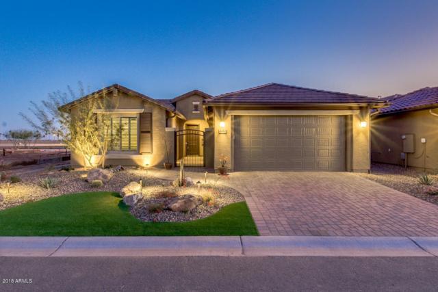 4413 W Box Canyon Drive, Eloy, AZ 85131 (MLS #5726027) :: Yost Realty Group at RE/MAX Casa Grande