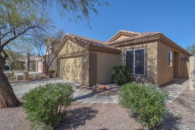 4410 E Creosote Drive, Cave Creek, AZ 85331 (MLS #5726032) :: RE/MAX Excalibur