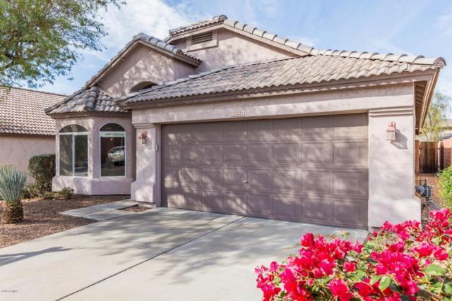 20224 N 9TH Street, Phoenix, AZ 85024 (MLS #5726851) :: Yost Realty Group at RE/MAX Casa Grande