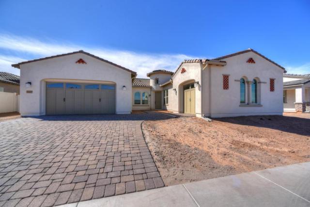 2315 E Beechnut Place, Chandler, AZ 85249 (MLS #5727056) :: Occasio Realty