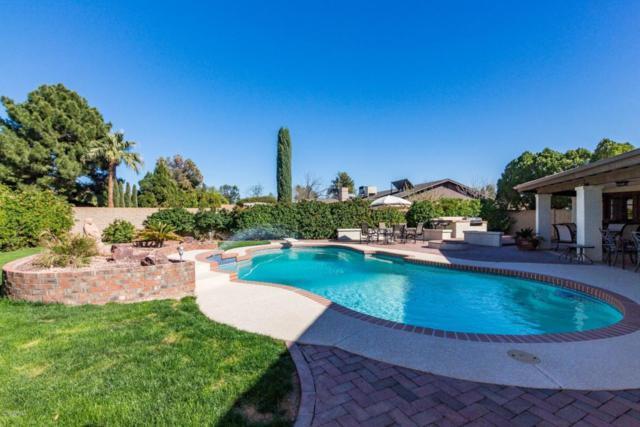 6616 W Wagoner Road, Glendale, AZ 85308 (MLS #5727283) :: Occasio Realty