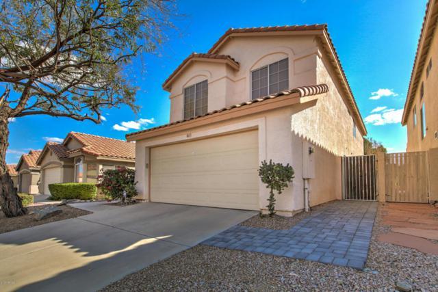 411 E Glenhaven Drive, Phoenix, AZ 85048 (MLS #5727650) :: The Wehner Group
