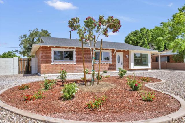 8702 E Roanoke Avenue, Scottsdale, AZ 85257 (MLS #5727857) :: Occasio Realty