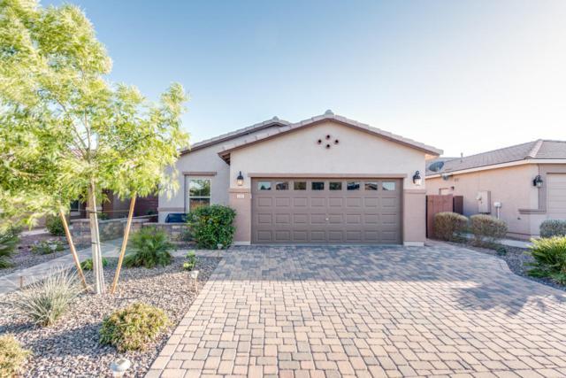 1187 W Popcorn Tree Avenue, San Tan Valley, AZ 85140 (MLS #5728076) :: Occasio Realty