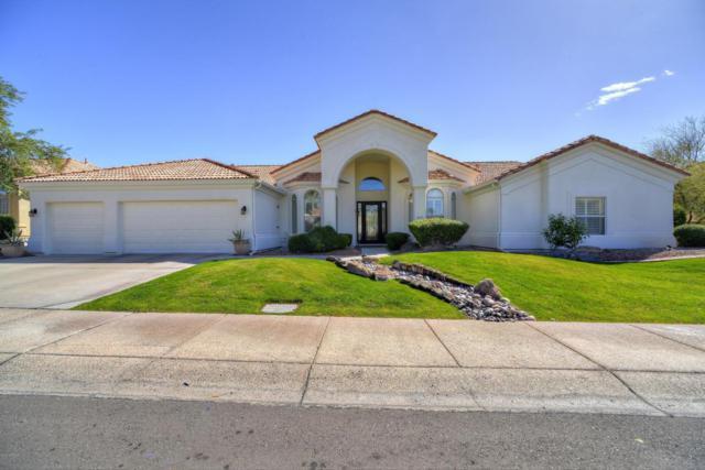 9719 N 113TH Way, Scottsdale, AZ 85259 (MLS #5728256) :: Occasio Realty