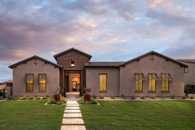 17689 E Appaloosa Court, Queen Creek, AZ 85142 (MLS #5728768) :: Occasio Realty